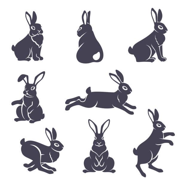 niedlichen kaninchen-silhouetten - kaninchen stock-grafiken, -clipart, -cartoons und -symbole
