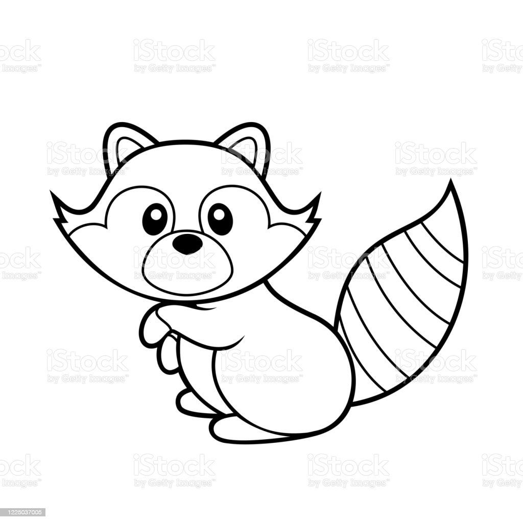 Cute Raccoon Coloring Page Vector Illustration On White Stock Illustration Download Image Now Istock