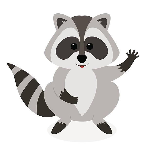 cute raccoon waving. vector cartoon illustration. - raccoon stock illustrations