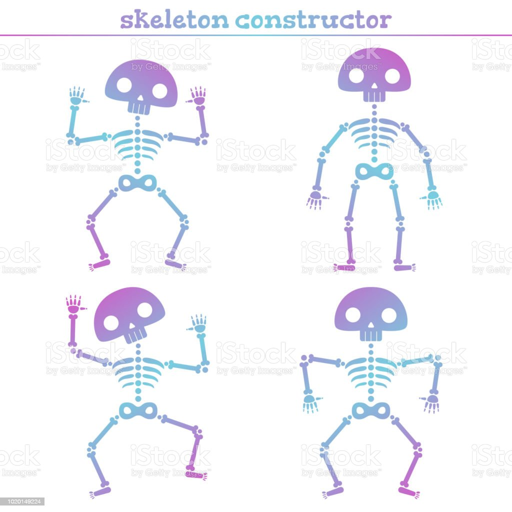 Cute Rainbow Human Skeleton Constructor For Creating Different Poses