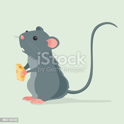 istock Cute Rat holding a piece of cheese 96418405