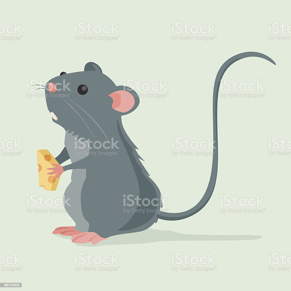 Cute Rat holding a piece of cheese vector art illustration