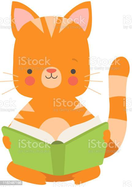 Cute red cat reading book adorable smart pet animal character sitting vector id1152487195?b=1&k=6&m=1152487195&s=612x612&h=gsfth5oqhtqgzoz1kzydqaxi x9wpi1iyvuvuhfx7pi=