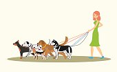 Cute red-haired girl walking many dogs of different breeds