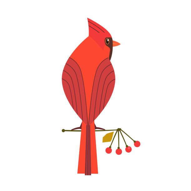 Cute Robin bird icon Cute Red Northern cardinal icon. Comic simple flat cartoon. Winter birds of backyard, city garden wonderland. Stylized funny bird isolated. Template for symbol, vector scavenger hunt card background bird clipart stock illustrations