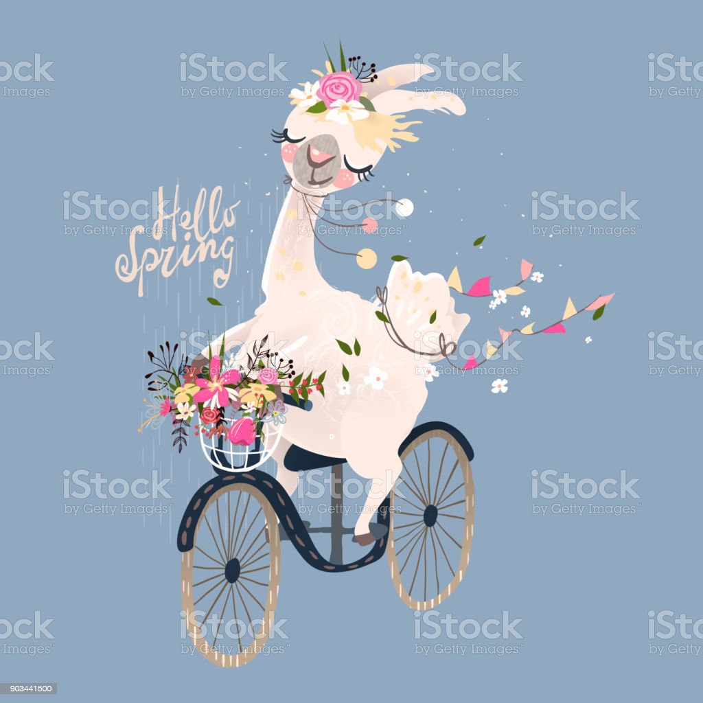 Cute romantic llama, alpaca with floral wreath and hanging flags drive the vintage bicycle vector art illustration