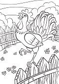 Cute rooster stands on the fence and cries.