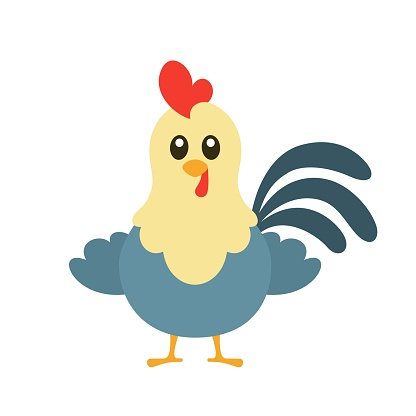 Cute Rooster Vector Illustration on White