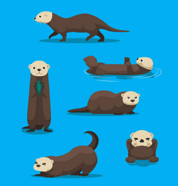 cute sea otter cartoon vector - otter stock illustrations, clip art, cartoons, & icons