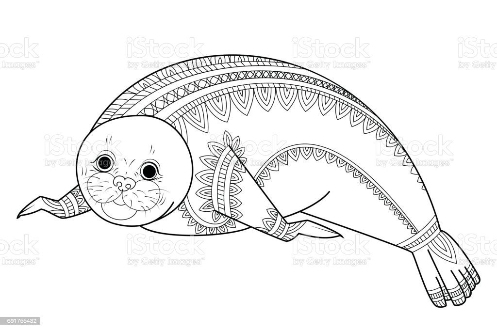 Cute Seal Vector Wild Animals Coloring Book For Adult Royalty Free