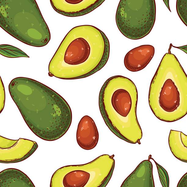 Cute seamless pattern made of hand drawn colorful avocados. vector art illustration