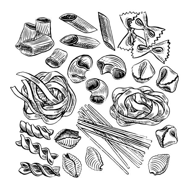 cute set of pasta cute set of various kinds of pasta. hand-drawn illustration penne stock illustrations