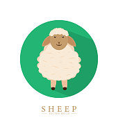 Sheep logo in circle. Vector drawing. Cute sheep design in cartoon style. Eps10.