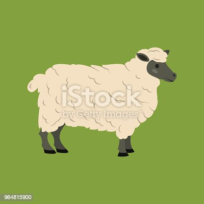 Cute Sheep On Green Background Stock Vector Art & More Images of Agriculture 964815900