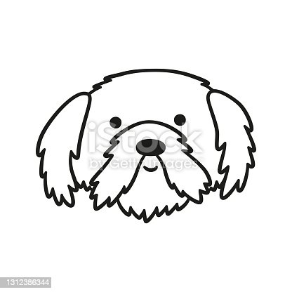 istock Cute Shih Tzu face. Dog head icon. Hand drawn isolated vector illustration 1312386344