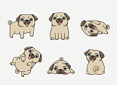 Funny pug in different pose set
