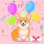 Cute sitting smiling corgi dog wishing Happy Birthday with party hat and balloons vector cartoon illustration. Kawai corgi puppy print.