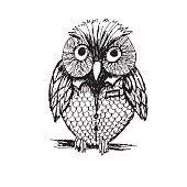 istock Cute Sketchy Owl 641011152