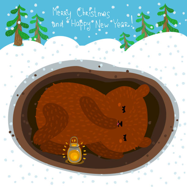 cute sleeping bear - hibernation stock illustrations