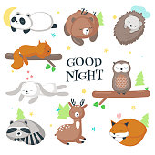 Cute sleeping wild animals icon set. Vector illustration of funny hedgehog fox bear squirrel owl raccoon rabbit deer and panda isolated on white background.