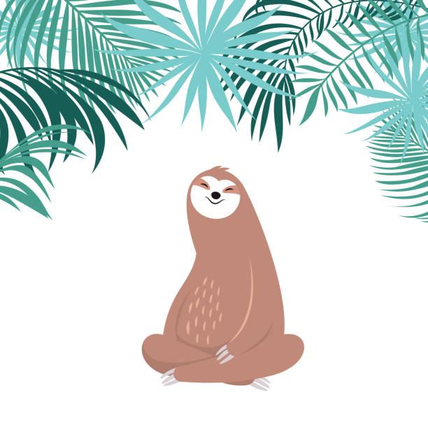 süße faulheit, liebenswertes tier der regenwälder - faul ast stock-grafiken, -clipart, -cartoons und -symbole