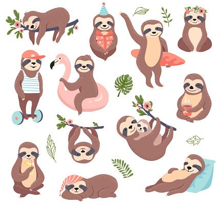 Cute sloth bear set.