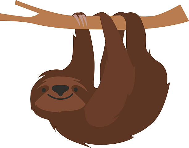 Royalty Free Sloth Clip Art, Vector Images & Illustrations ...
