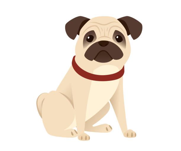 pug vector art graphics freevector com pug vector art graphics freevector com