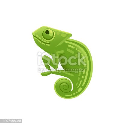 Cute small green chameleon lizard cartoon animal design flat vector illustration isolated on white background.