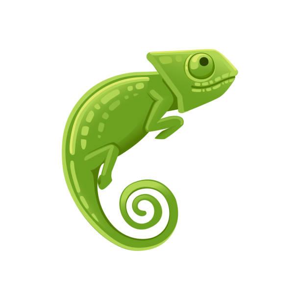 cute small green chameleon lizard cartoon animal design flat vector illustration isolated on white background - chameleon stock illustrations