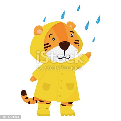 istock Cute smiling tiger character in raincoat. Vector illustration for postcards, banners and more. 1314836500