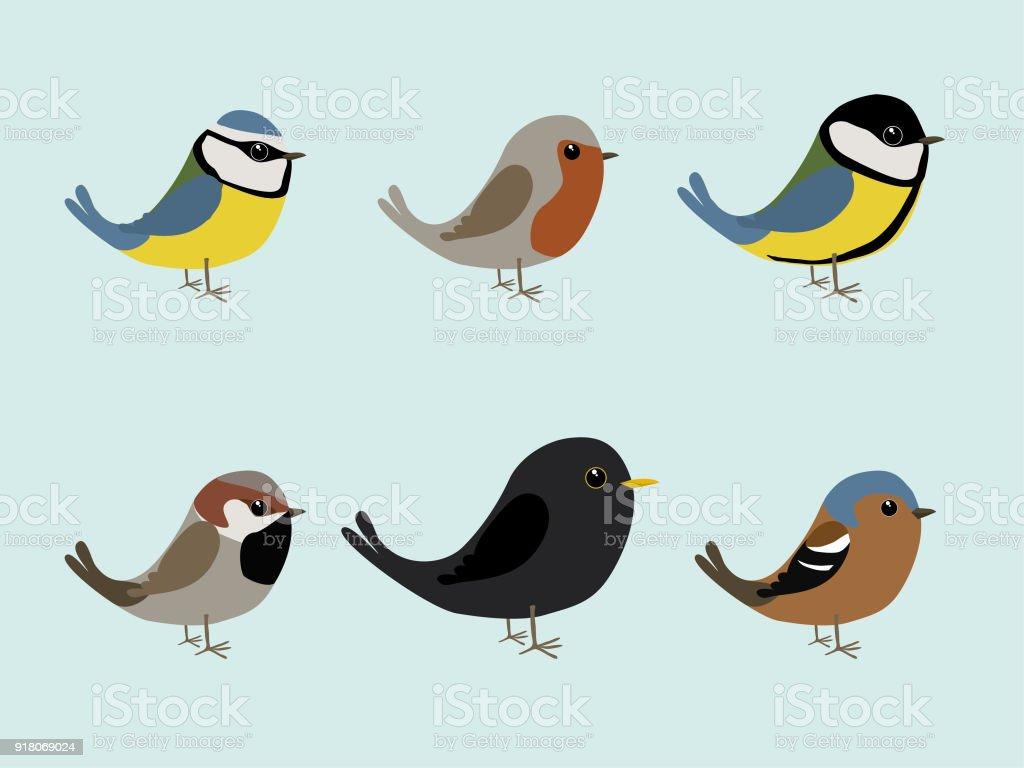 かわいい小鳥 アオガラのベクターアート素材や画像を多数ご用意 Istock