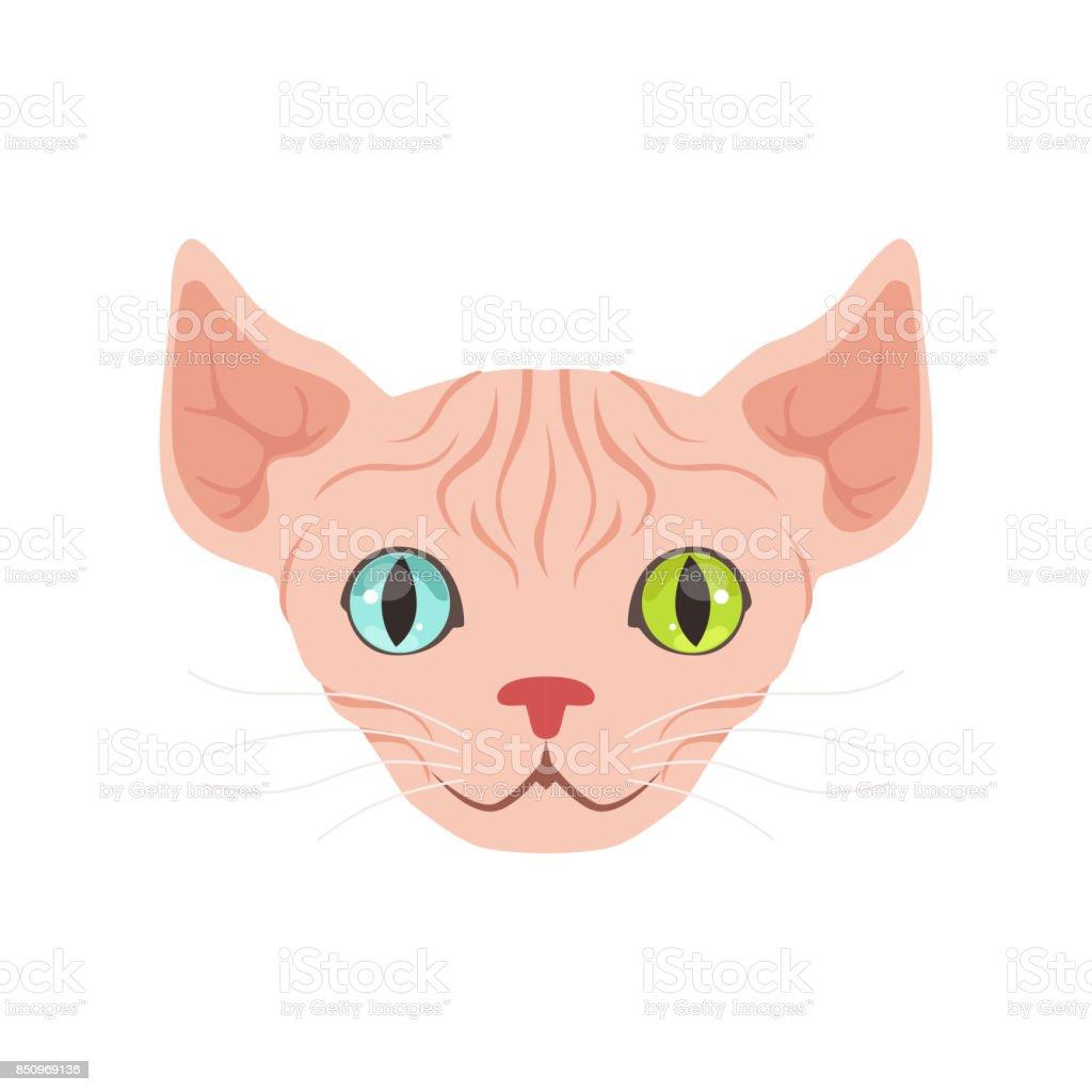 Ilustración de Gato Esfinge Linda Con Ojos De Diferentes Colores ...