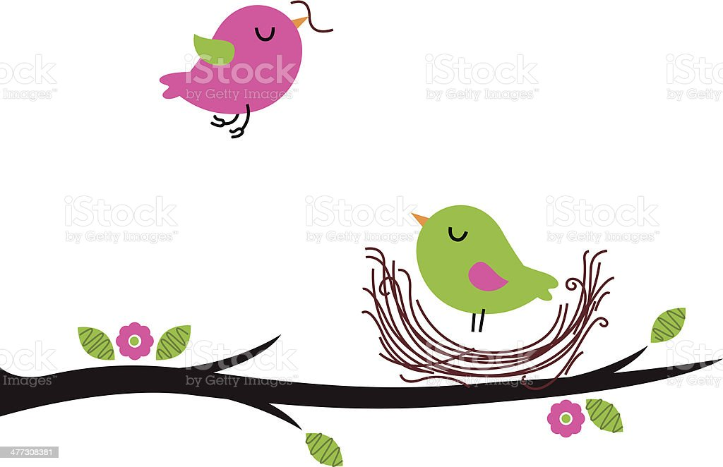 Cute spring nesting birds isolated on white vector art illustration