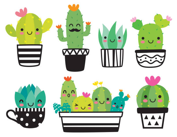 cute succulent or cactus vector illustration - cute stock illustrations
