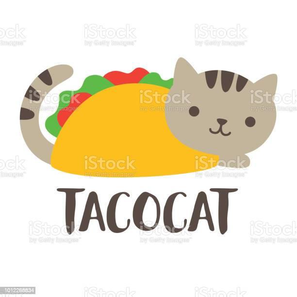 Cute taco cat vector illustration vector id1012268834?b=1&k=6&m=1012268834&s=612x612&h=pz9jofiaricgtcmhbz9xmkaovmdcxopnnpuolv pkto=