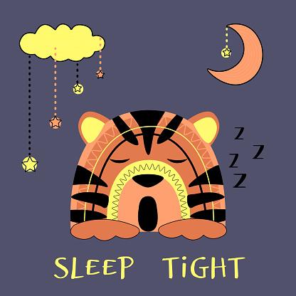 Cute tiger baby sleeps.