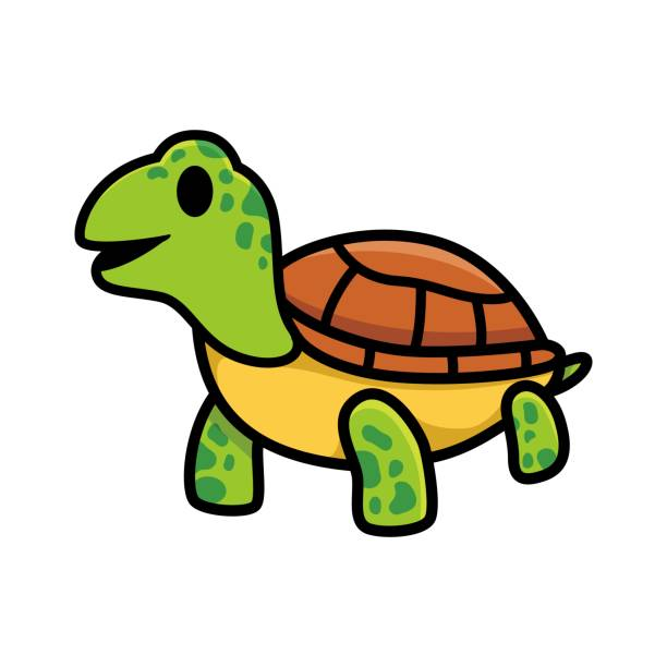 Turtle Tortoise Slow Walking Illustrations, Royalty-Free ...