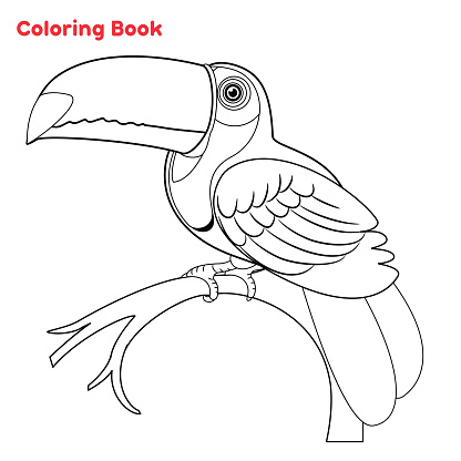 Cute Toucan coloring book page