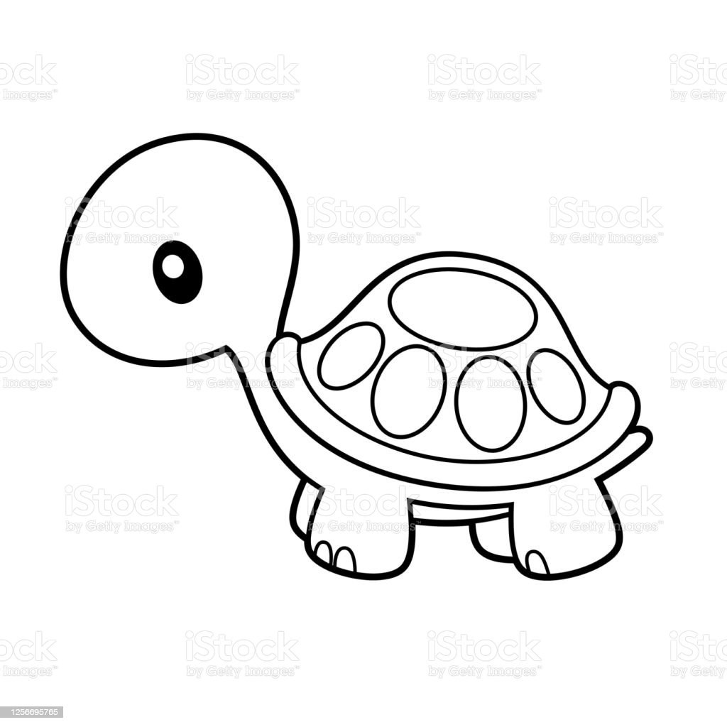 Cute Turtle Coloring Page Vector Illustration On White Stock