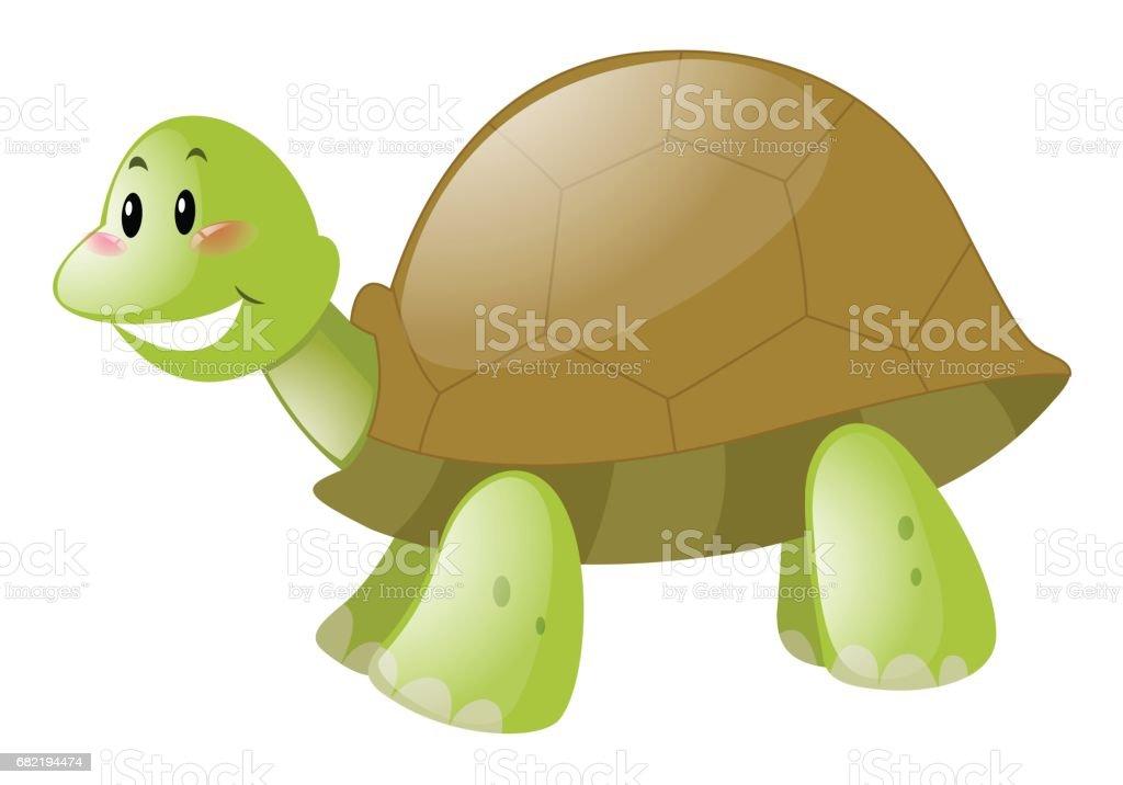 Cute turtle on white background vector art illustration