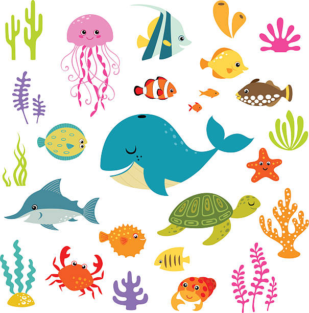 Cute underwater world Set of cute cartoon underwater elements for your sea design. turtle stock illustrations