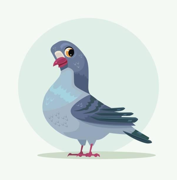 niedliche urbane grau-blaue taubenfigur - wildtaube stock-grafiken, -clipart, -cartoons und -symbole