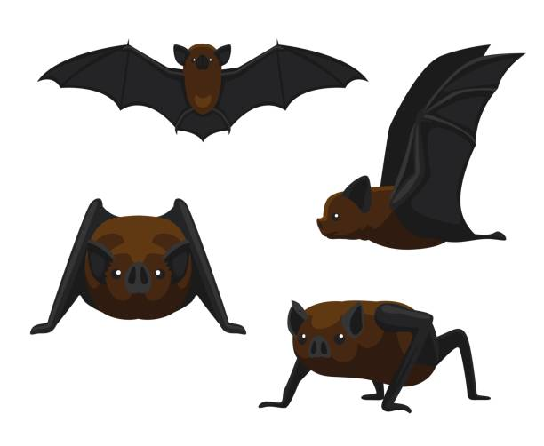 cute vampire bat cartoon vector illustration - bat stock illustrations, clip art, cartoons, & icons