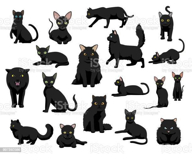 Cute various black cat cartoon vector illustration vector id997392586?b=1&k=6&m=997392586&s=612x612&h=3ub mdccykxwgw8mlzxi4iv2utlwn4cwzet1tnywb y=