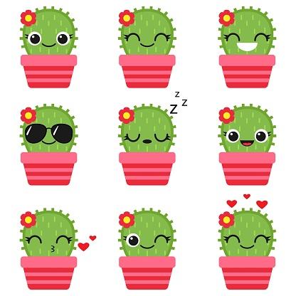 Cute vector cactus in pink pot