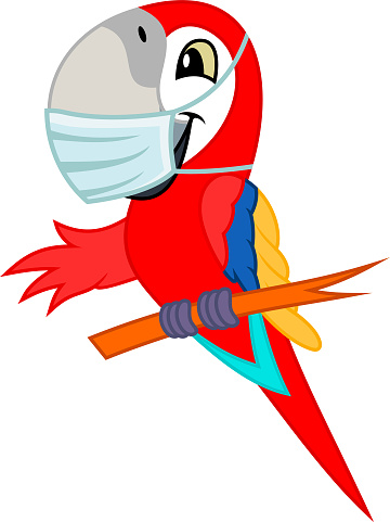 Cute Vector cartoon red scarlet Macaw ara parrot with mask