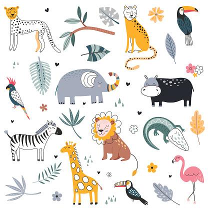Cute vector collection of safari animals, elephant, dangerous alligator, wild cat, lion, flamingo, giraffe and tropical plants.