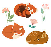 Cute vector illustration with little fox, red panda and deer isolated on white background. Can be used as elements for banner, poster, greeting card, postcard and print.