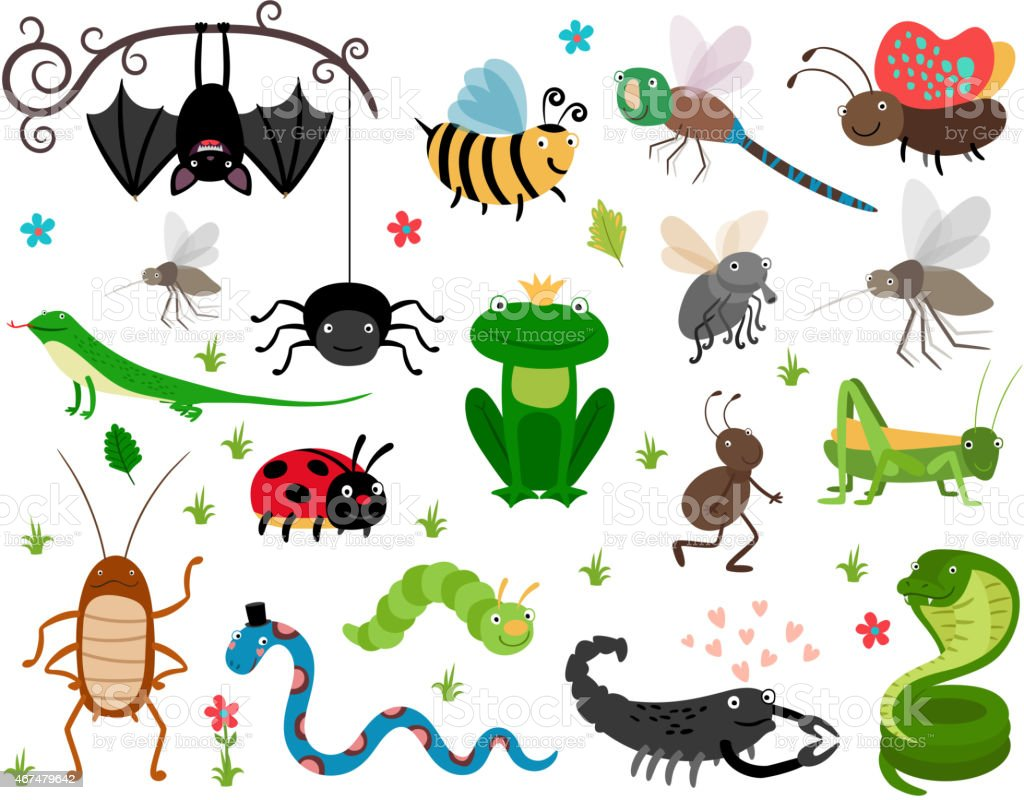 Cute vector insects, reptiles. Bee, grasshopper, lizard and snake vector art illustration